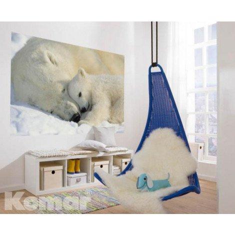 Fotobehang Polar Bears