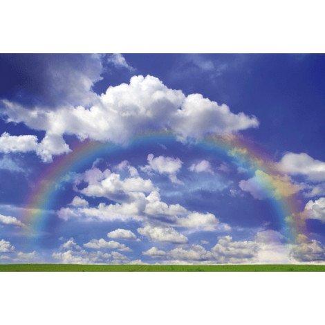 Rainbow behang