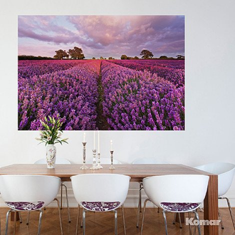 Fotobehang Lavendel