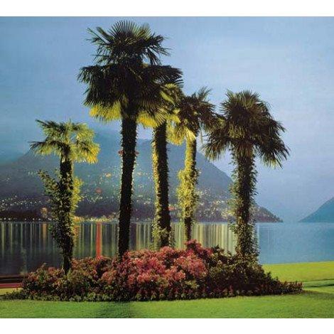 Fotobehang Lugano