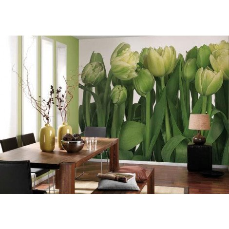Fotobehang Tulips