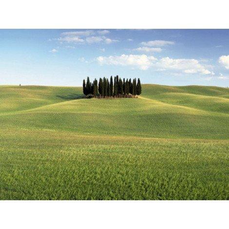 Fotobehang Tuscany