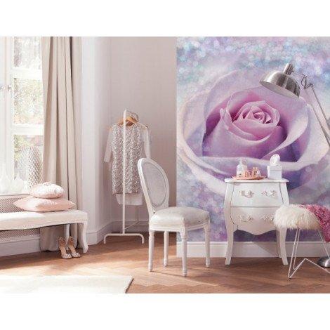 Fotobehang Delicate Rose