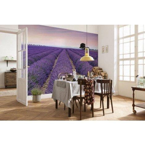 Fotobehang Provence