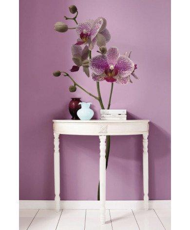 Muursticker Orchidee
