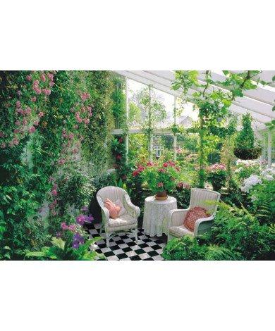 Fotobehang Conservatory