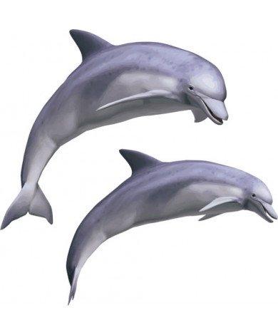 Fotobehang Dolfijn