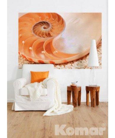 Fotobehang Nautilus