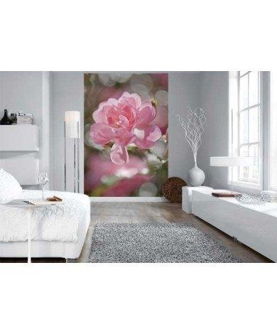 Fotobehang Bouquet