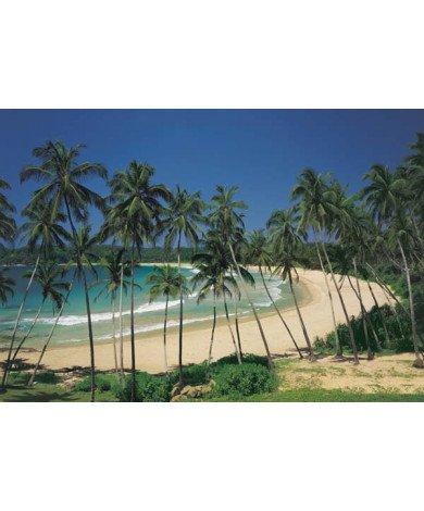 Fotobehang Cottegoda Bay