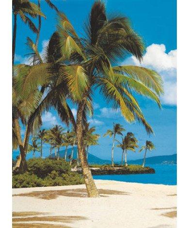 Fotobehang Hawaii