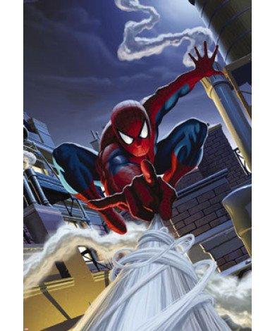 Fotobehang Spider-Man Rooftop