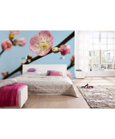 Fotobehang Peach Blossom